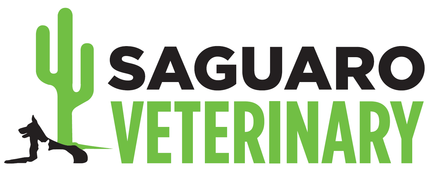 Saguaro Veterinary Clinic
